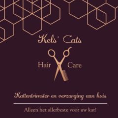 Kels' Cats ~ Hair & Care